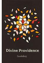 Divine Providence, Pulsford & Dick, hardback